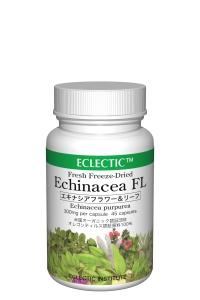 EchinaceaFL-FFD45