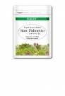 eco15_SawPalmetto