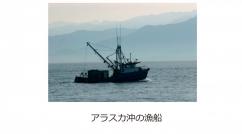 SalmonCaps-img2